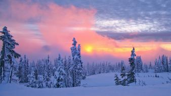 Mount rainier washington snow weather Wallpaper