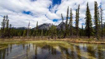 Mountains clouds landscapes trees canada canadian rockies wallpaper
