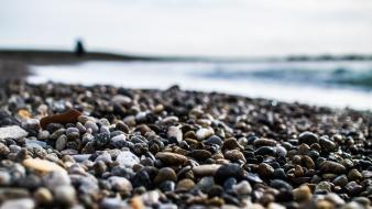 Nature stones pebbles depth of field sea beach Wallpaper