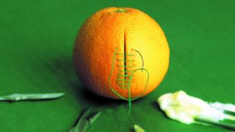 Orange funny medical stitch cutting green background wallpaper