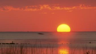 Sunset ocean sun florida gulf skies wallpaper