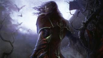Video games shadows castlevania castlevania: lords of shadow Wallpaper