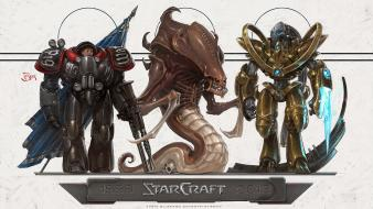 Video games starcraft zerg terran protoss blizzard entertainment wallpaper