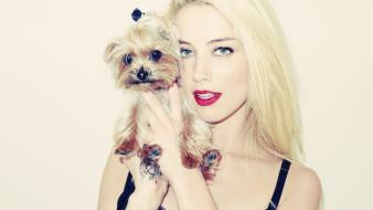 Blondes dogs amber heard Wallpaper