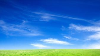 Blue Sky And Green Grass wallpaper