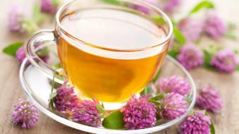 Tea macro drinks lavender herbs Wallpaper