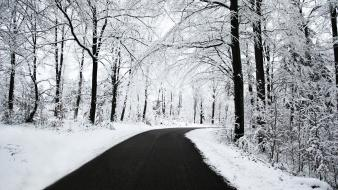 Winter Road Hd Wallpaper