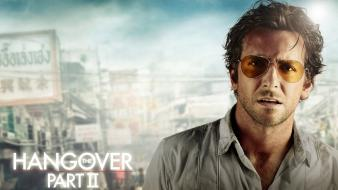 Actors bradley cooper the hangover part ii wallpaper