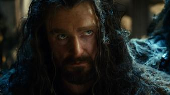 Armitage still desolation of smaug the hobbit: wallpaper