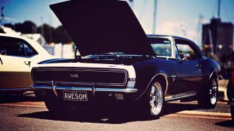 Cars classic american muscle Wallpaper