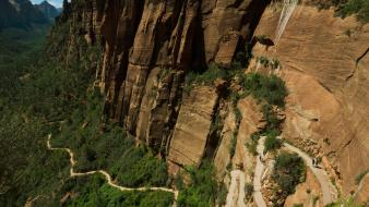 Cliffs plants utah national park zion trails wallpaper