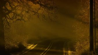 Creepy landscapes fog roads wallpaper