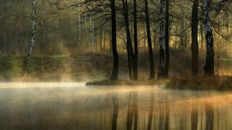 Forests fog silent lagoon reflections morning view Wallpaper