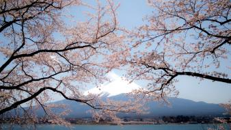 Japan nature mount fuji wallpaper