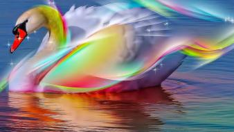 Abstract swans colors wallpaper