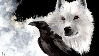 Albino jon snow ravens direwolf ghost wolves wallpaper