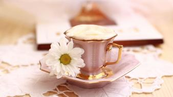 Flowers coffee food brown beans drinking and milk wallpaper