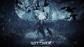Video games the witcher 3: wild hunt wallpaper