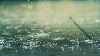 Water rain drops depth of field splashes wallpaper