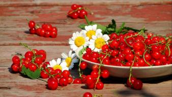 Flowers fruits wallpaper