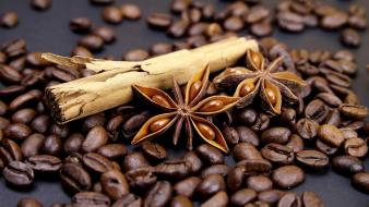 Food coffee beans Wallpaper