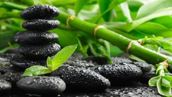 Green black bamboo stones wallpaper
