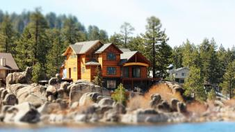 Trees houses tilt-shift cabin wallpaper