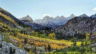 Bishop california autumn forests gray wallpaper