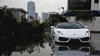 Cars lamborghini gallardo lp750-4 wallpaper