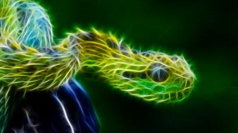 Nature fractalius snakes reptiles wallpaper