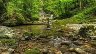 Nature trees forests hills waterfalls creek deep wallpaper