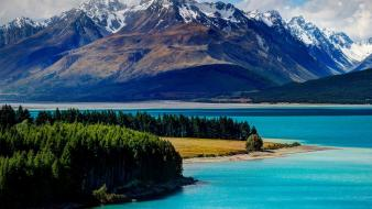 New zealand forests landscapes mountains nature wallpaper