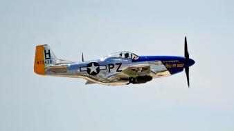 Aircraft p-51 mustang wallpaper