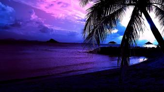 Beaches landscapes palm trees wallpaper
