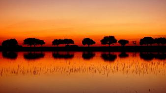 Dawn landscapes nature reflections silhouettes Wallpaper
