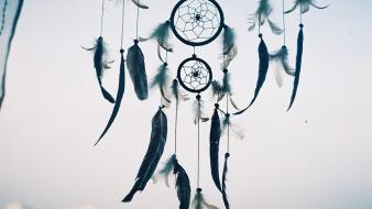 Dreamcatchers feathers wallpaper