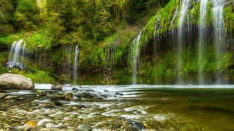 Green water landscapes nature trees forests waterfalls creek wallpaper