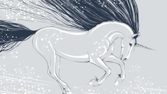 Horses unicorns wallpaper