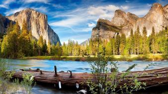 Nature trees forests rivers yosemite national park wallpaper