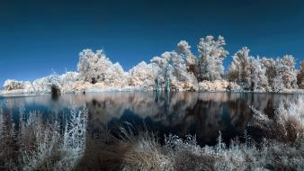 Water landscapes nature winter trees white lakes wallpaper