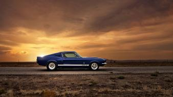 American muscle car ford mustang gt500 shelby cars wallpaper