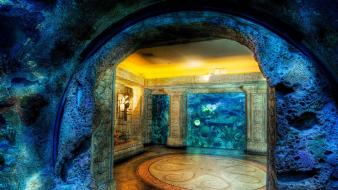 Aquarium hdr photography wallpaper