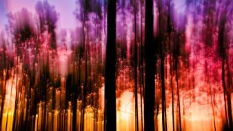 Artistic digital art lights nature trees wallpaper