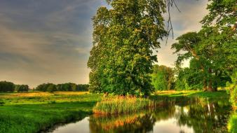 Landscapes nature trees germany rivers basedow Wallpaper