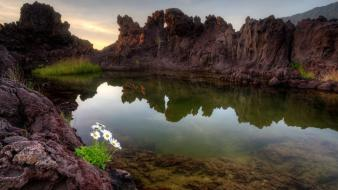 Nature white flowers lava rocks crater lagoon wallpaper