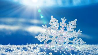 Snowflakes icy crystal wallpaper