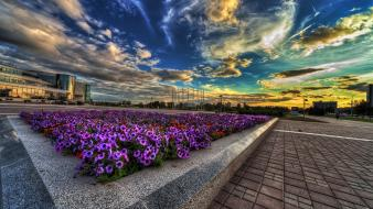 Sunset clouds flowers urban hdr photography cities skies wallpaper