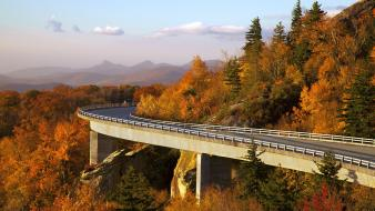Trees autumn forests roads viaduct colors cove wallpaper