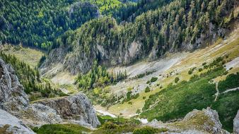 Alps austria forests hills landscapes wallpaper