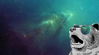 Bears outer space sunglasses wallpaper